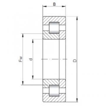 35 mm x 100 mm x 25 mm  ISO NUP407 cylindrical roller bearings