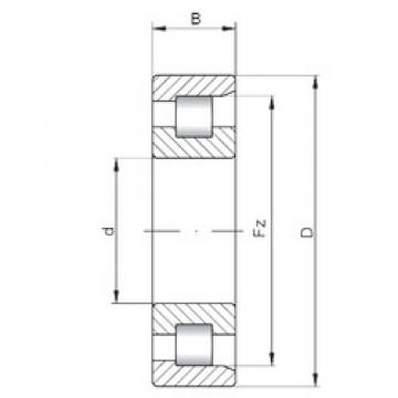 35 mm x 100 mm x 25 mm  ISO NF407 cylindrical roller bearings