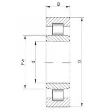 50 mm x 110 mm x 44,4 mm  ISO NU3310 cylindrical roller bearings