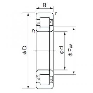 35 mm x 100 mm x 25 mm  NACHI NUP 407 cylindrical roller bearings