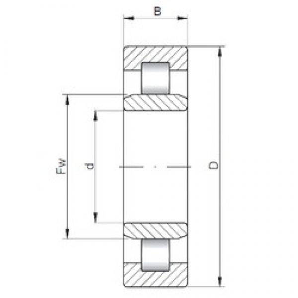 35 mm x 100 mm x 25 mm  ISO NU407 cylindrical roller bearings #1 image